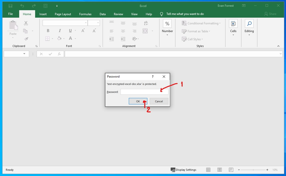 Type the Password and click OK to pen Excel workbook